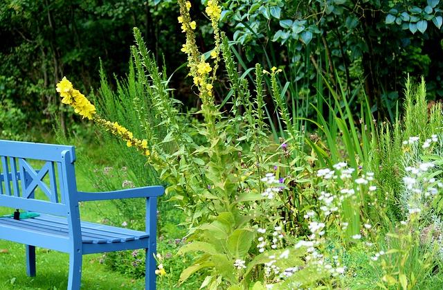 7 astuces pour embellir votre jardin