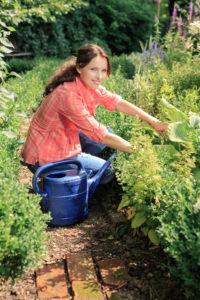 Entretenir son jardin efficacement