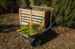 Favoriser un environnement propre pour son jardin