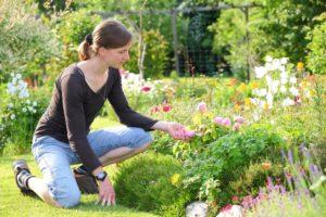 Les méthodes pour entretenir son jardin