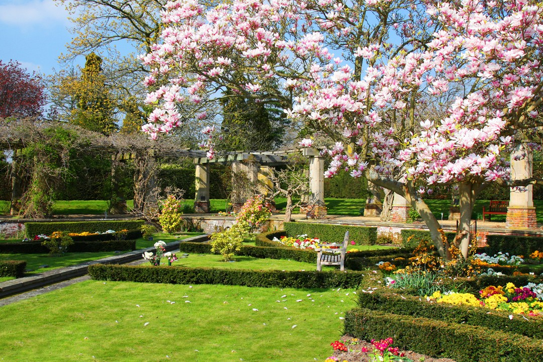 environnement jardin